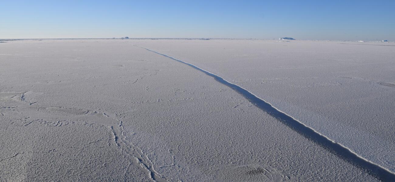 New sea ice