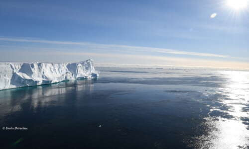 Old Ice Shelf Front new seaice copyright