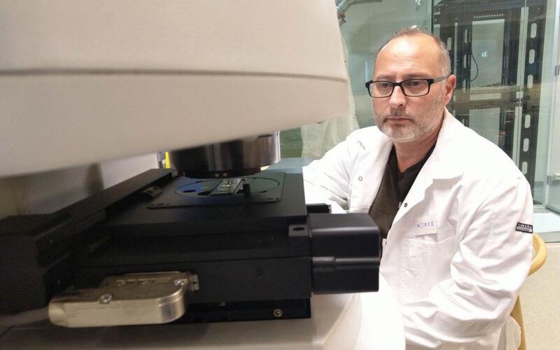 Alessio analyse mikroplast