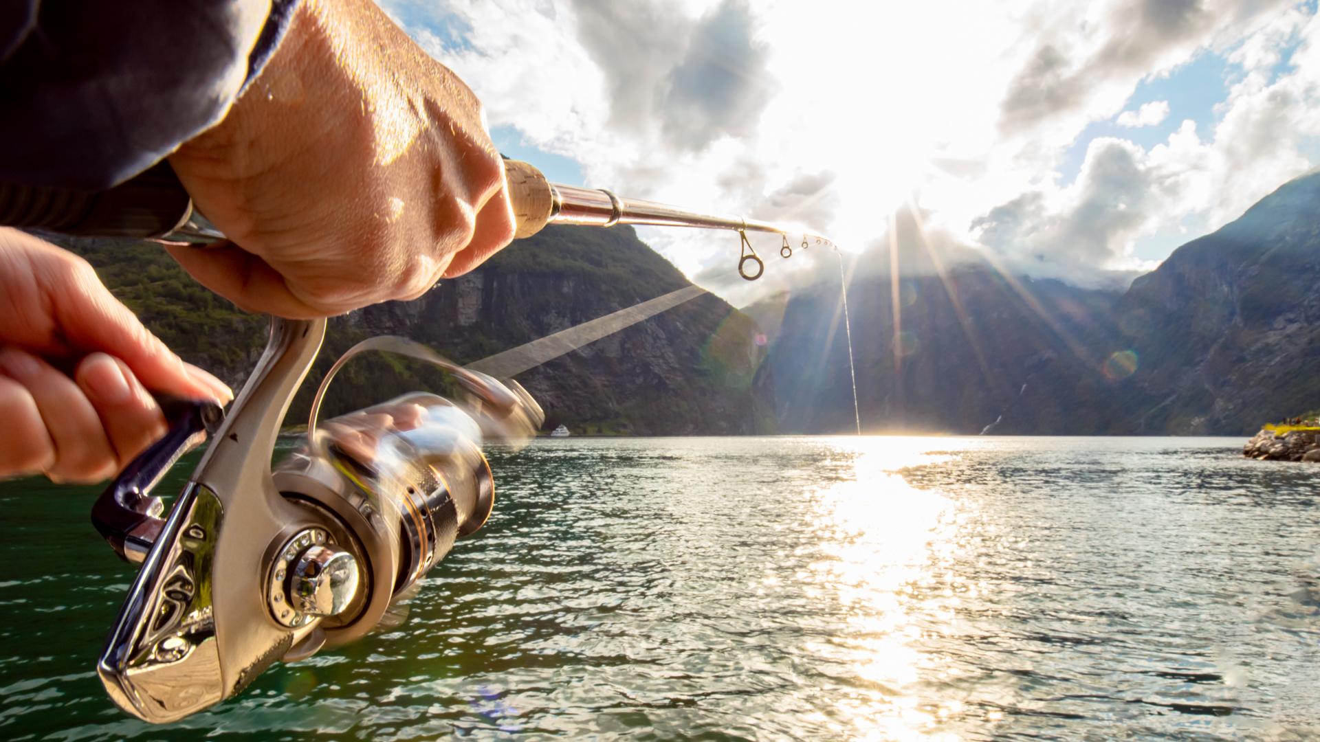Fiske stang sluk illustrasjon